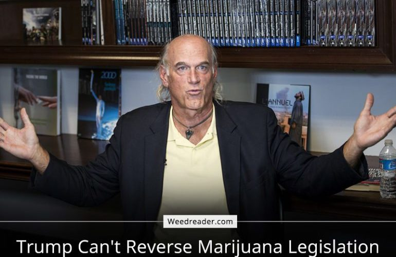 Trump Can't Reverse Marijuana Legislation